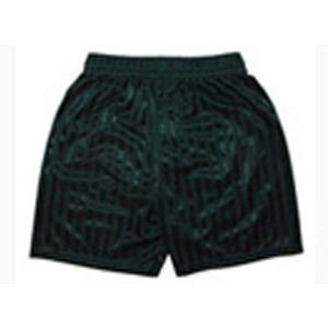 Colgate Primary School Green PE Shorts