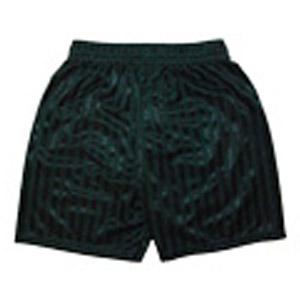 ShipleyShipley Primary School PE shorts
